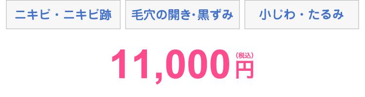 ニキビ・ニキビ跡 毛穴の開き・黒ずみ 小じわ・たるみ 11,000円(税込)