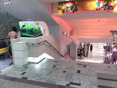 東京中央美容外科新宿院 本院丸ノ内線ルート03